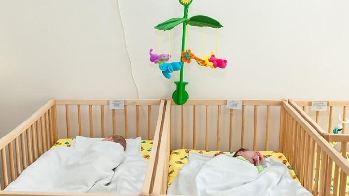Минус полшколы в «Парковом»: рассказываем, как упала рождаемость в Челябинской области
