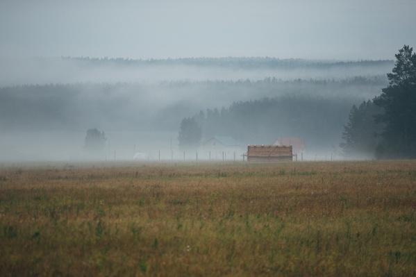 Ребенок гулял в поле вместе с пастухом, когда начался сильный ливень