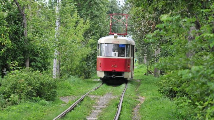 На ВИЗе сегодня частично откроют движение трамваев