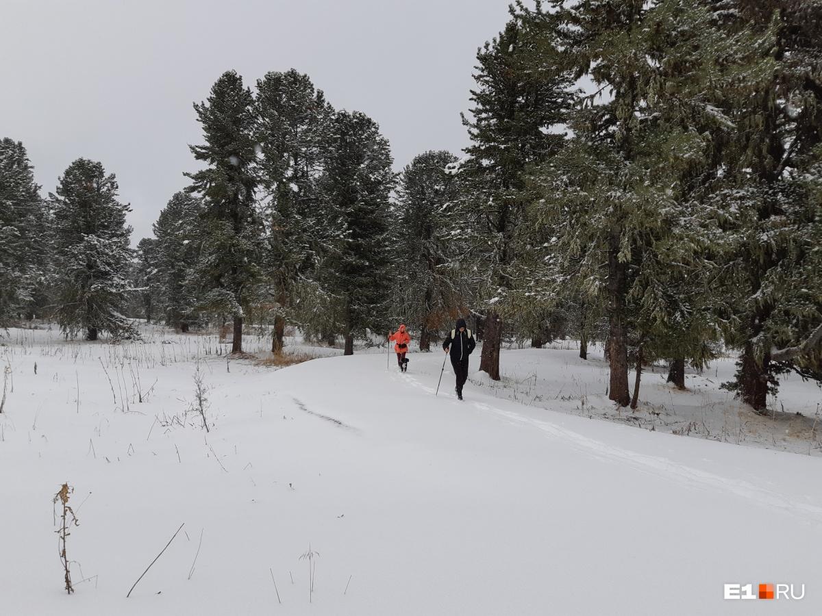 По дорожке (под снегом — асфальт) еще ничего, а дальше мы изрядно проваливались