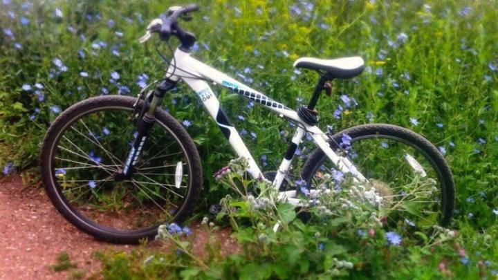 В Уфе поймали воровку велосипедов