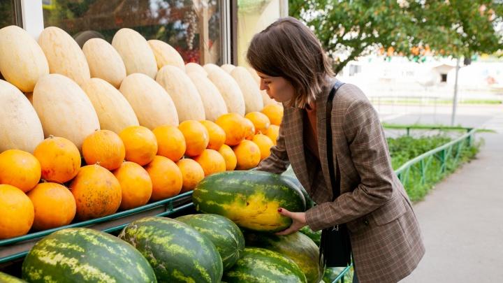 Как выбрать в Тюмени самые вкусные арбуз и дыню? Объясняем в двух картинках и 10 фотографиях