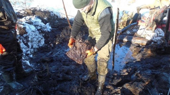 В Красноярске ищут родственников летчика, сбитого под Новгородом в 1942 году