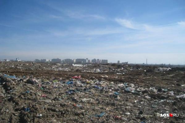 Так выглядит временный мусорный полигон рядом с Левенцовкой