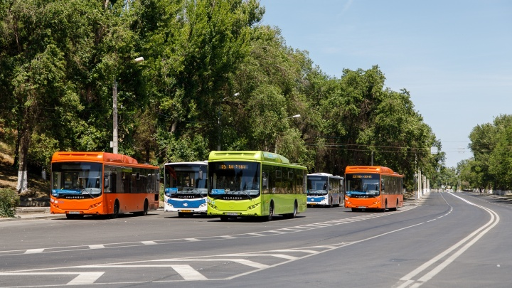 Сотня шаттлов и челночные трамваи: в Волгограде во время матчей изменится расписание транспорта