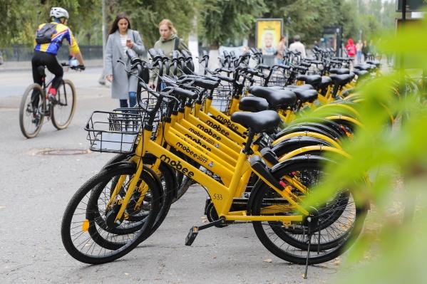 Желтые велосипеды скрылись в другом городе