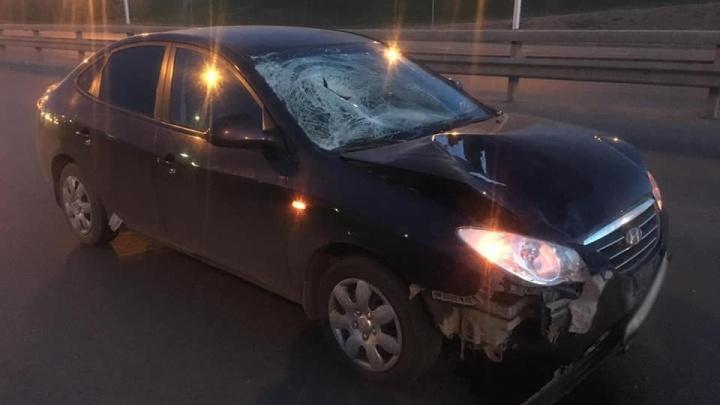 В Башкирии погибли два пешехода:одного задавил автобус, второго — легковушка