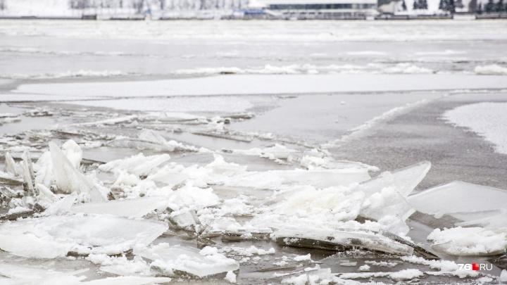 В Ярославской области в реке нашли тело велосипедиста