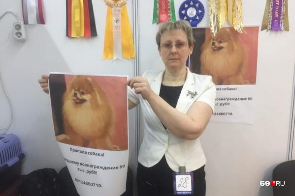 Марина готова отдать за Симу 150 тысяч рублей или лучшего щенка померанского шпица
