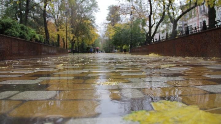 Град, ливень и сильный ветер: на Дону прогнозируют резкое ухудшение погоды