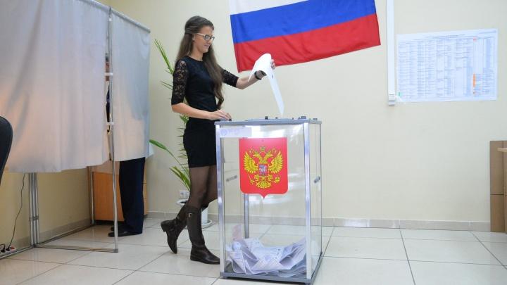 Шпаргалка для избирателя: что за выборы пройдут в воскресенье и где голосовать