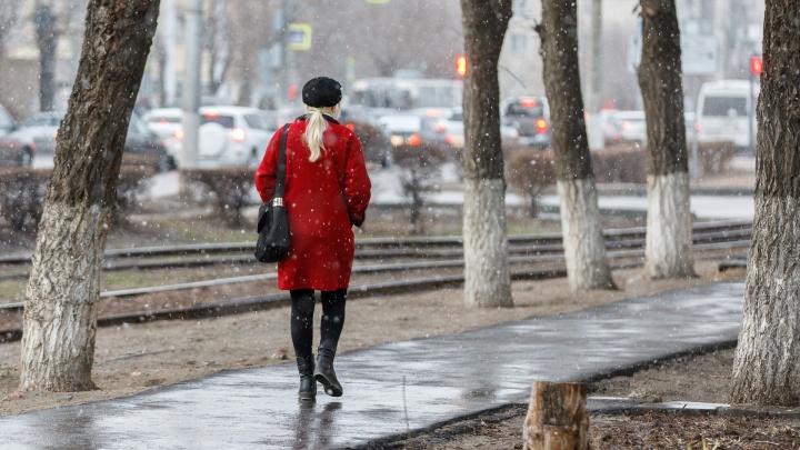 «Конец марта — хулиган»: волгоградцы делятся фото и видео снегопада