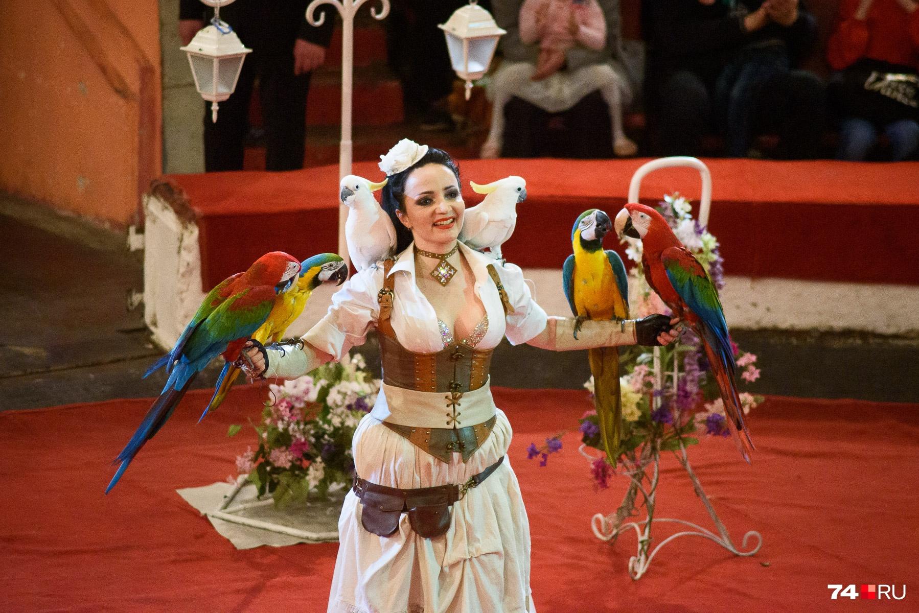И её же подопечные —попугаи Ара, Какаду
