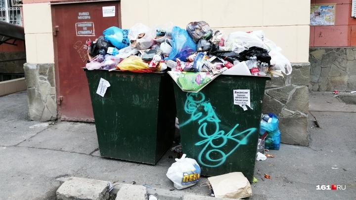 Простая математика: многодетная мать из Сальска раскритиковала мусорную реформу