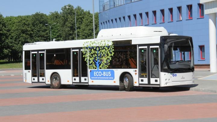 «Оформят — и на линию»: власти Челябинска рассказали, когда город получит новые экоавтобусы