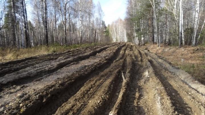 Омский строитель Сароян получил три года колонии за «невидимый дорожный ремонт»