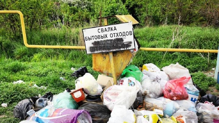 «Получили свалку за свои деньги»: в Светлоярском районе жители устроили арт-протест