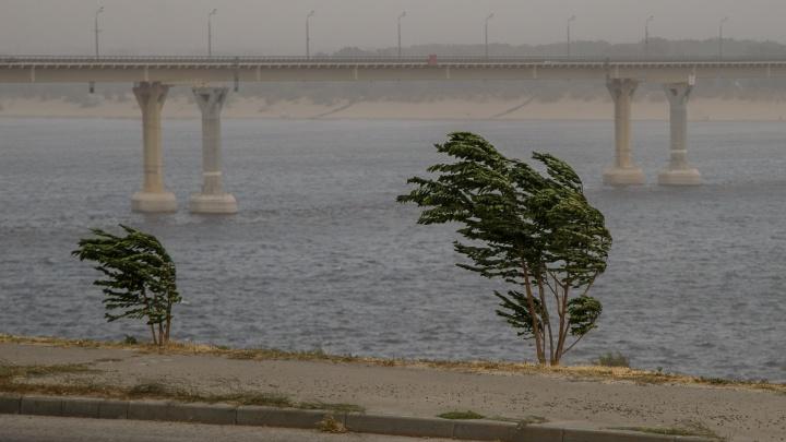 В Волгоградской области ожидаются жёсткий шторм и грозовые ливни
