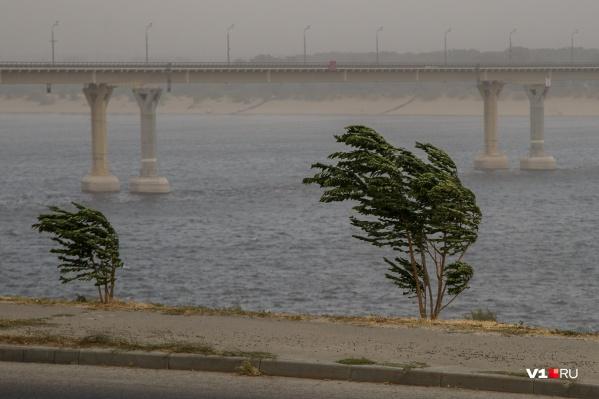 В Волгограде будет лить дождь, а ветер поднимется до 24 м/с
