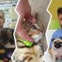 «Долго не проживут»: челябинского ветеринара встревожило состояние животных в контактном зоопарке
