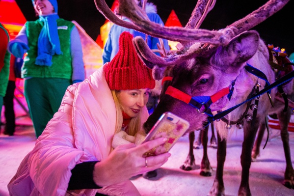 Последние дни года порадуют погодой, а 1 января в Новосибирске опять похолодает