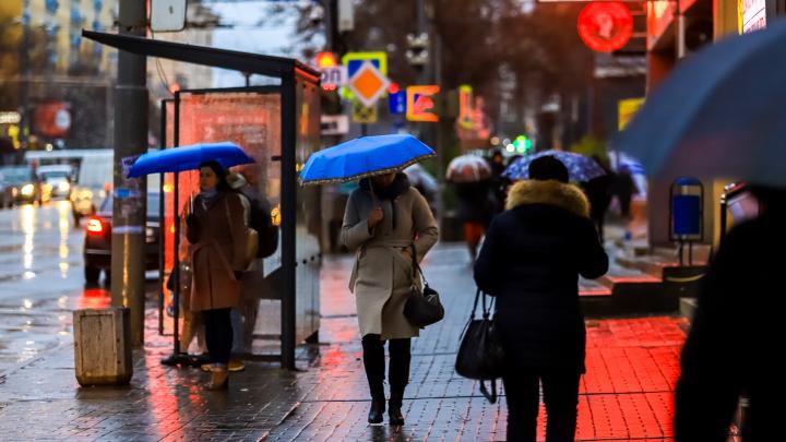 Осень здорового человека: какая погода будет в Ростове на этой неделе