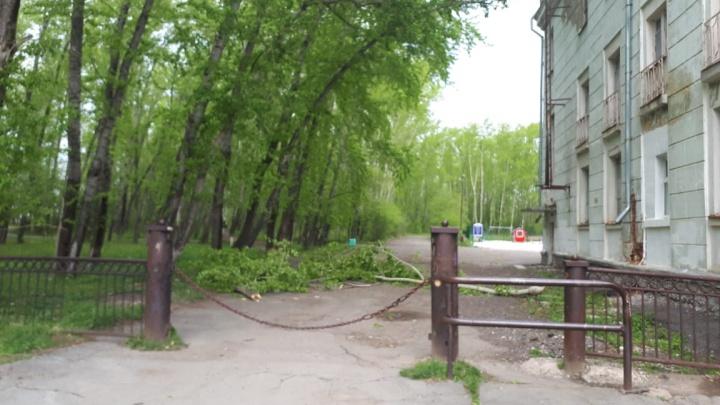 В Башкирию приехала молодая мама из Свердловской области, пострадавшая после падения тополя