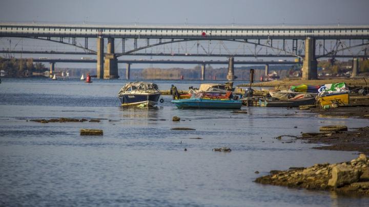 В Новосибирске снизился уровень Оби — плавать ещё можно