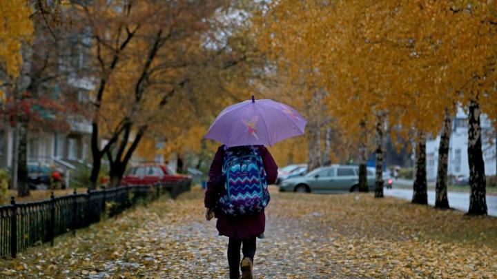 Чуть-чуть отогреемся: чего ждать от погоды в Башкирии