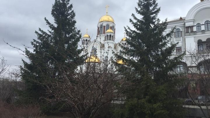Николай Коляда предложил организовать маленький летний театр за Храмом-на-Крови