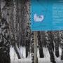 Чиновники уверены, что строительство дорог не нанесет урон памятнику природы «Тополя», а защитит его