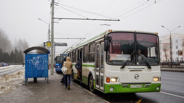 В Ярославле автобус проехал по 90-летней пассажирке: бабушке ампутировали руку