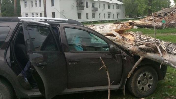 МЧС выпустило предупреждение о штормовом ветре в Свердловской области