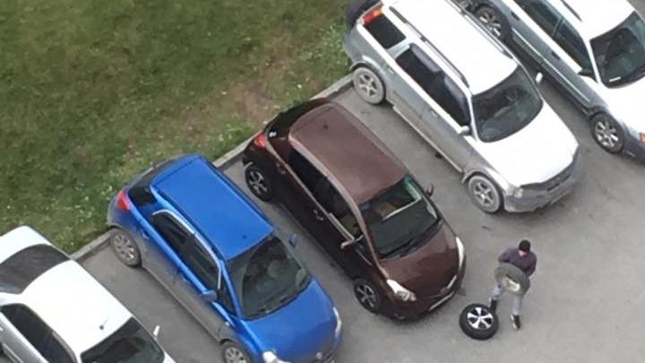 Новосибирцы кинулись «переобувать» автомобили