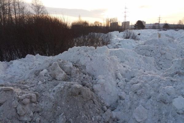 Вот такие горы снега образовались этой зимой в поле неподалёку от ЖК «Апрель»