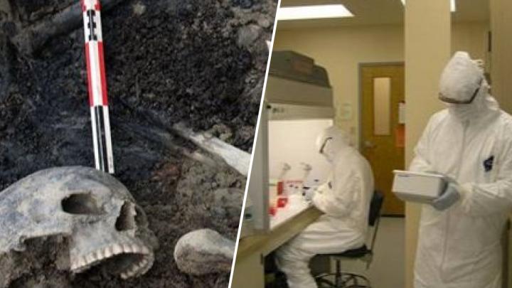 Откопали изуродованные кости: учёные раскрыли тайну гибели Ярославля в XIII веке