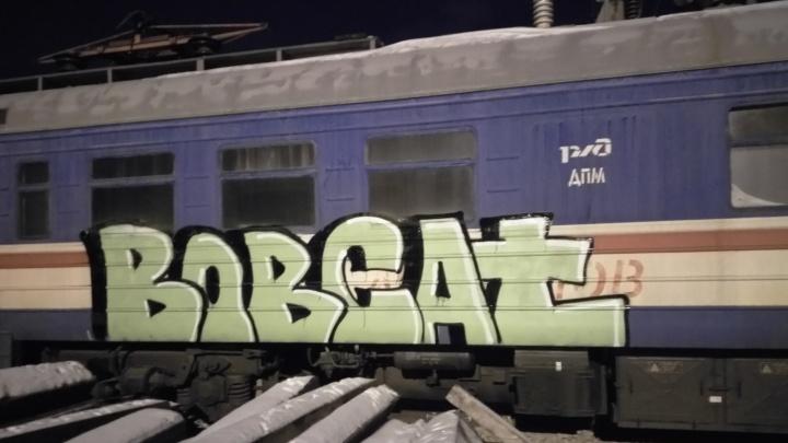Опытных граффитистов за разрисовыванием железнодорожных вагонов в Красноярске ночью поймала полиция