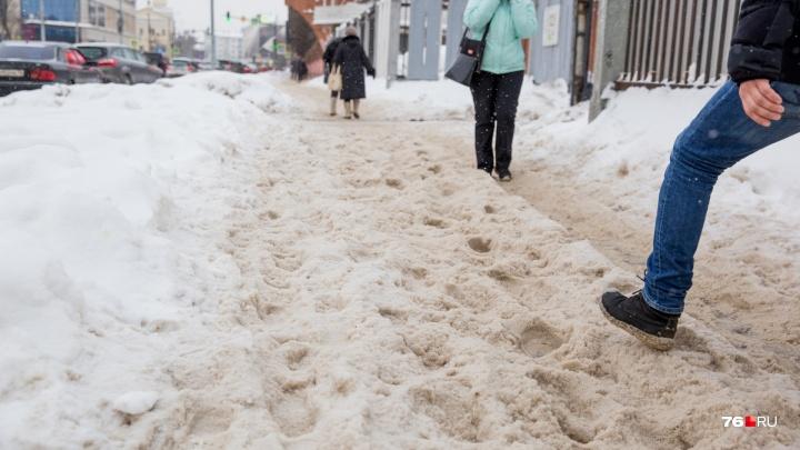 «Этот снег не победить»: колонка рассерженного фотографа 76.RU