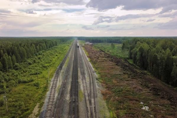 Первая информация о возможном «мусорном» строительстве на станции Шиес появилась в середине августа