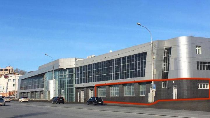В здании автоцентра Lexus на Большевистской откроют теплицу с зеленью
