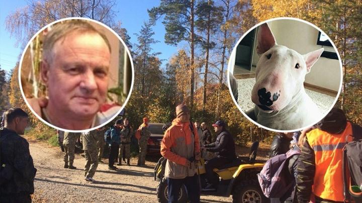 Масштабные поиски бесследно пропавшего в лесу мужчины с собакой повторно объявили волонтёры