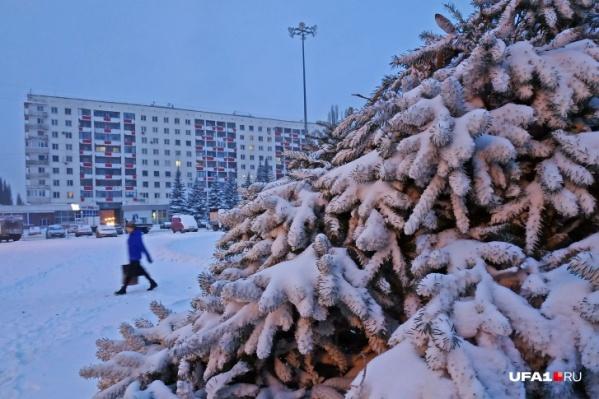 Мокрый снег выпадет в Уфе