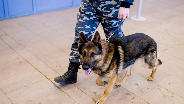 В Ярославской области задержали мужчину, который торговал наркотиками на вокзале