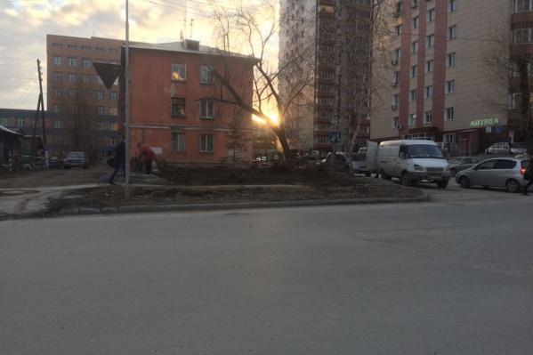 Предприниматель незаконно вырубил деревья во дворе дома