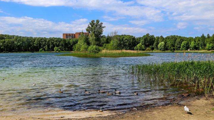 Где в Нижнем Новгороде купаться хорошо. Полный обзор и карта всех городских пляжей