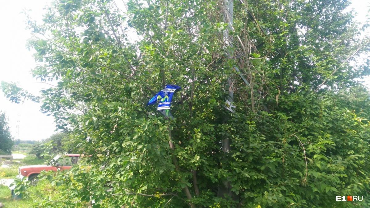 После удара части мотоцикла оказались на дереве