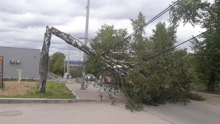 В Прикамье из-за шквалистого ветра и ливней без света остались больше 20 тысяч человек