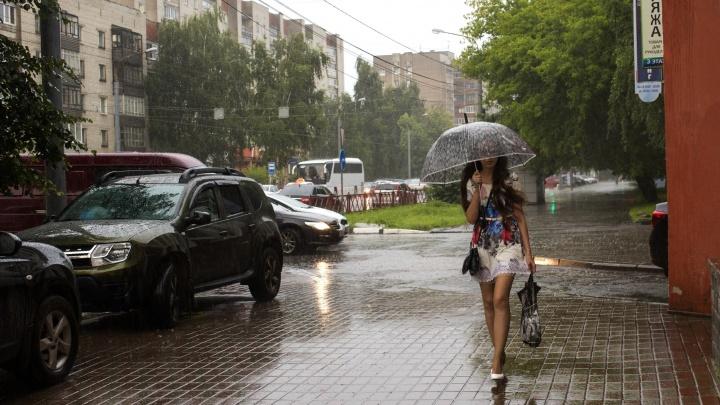 Куртки снимайте, а зонты возьмите: синоптики рассказали о погоде в Ярославле на 9 мая
