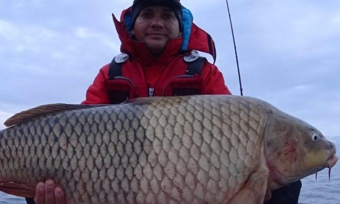 Новосибирец поймал рыбу весом 13 килограмм