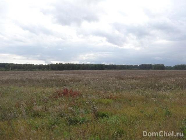 Самый дорогой участок в Челябинской области сейчас продаётся за 350 миллионов рублей